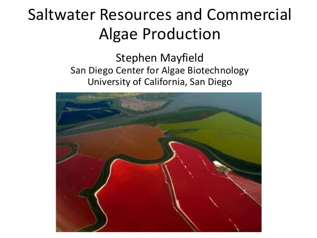 Saltwater Resources and CommercialAlgae ProductionStephen MayfieldSan Diego Center for Algae BiotechnologyUniversity of Ca...