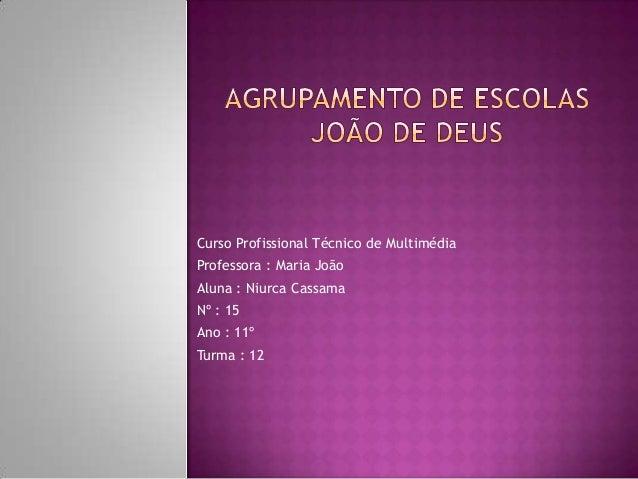 Curso Profissional Técnico de Multimédia Professora : Maria João Aluna : Niurca Cassama Nº : 15 Ano : 11º Turma : 12