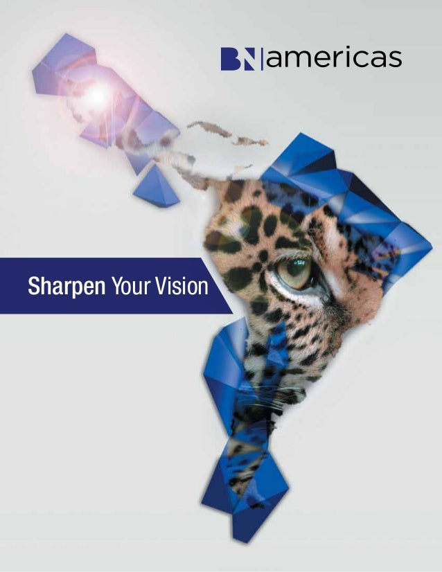 BNamericas.com 1Sharpen Your Vision