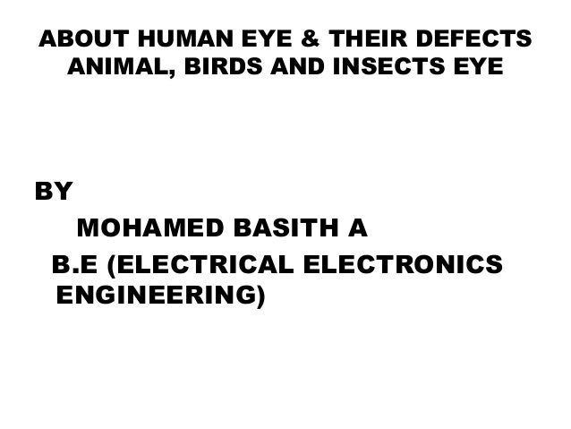 about human and animal birds eye