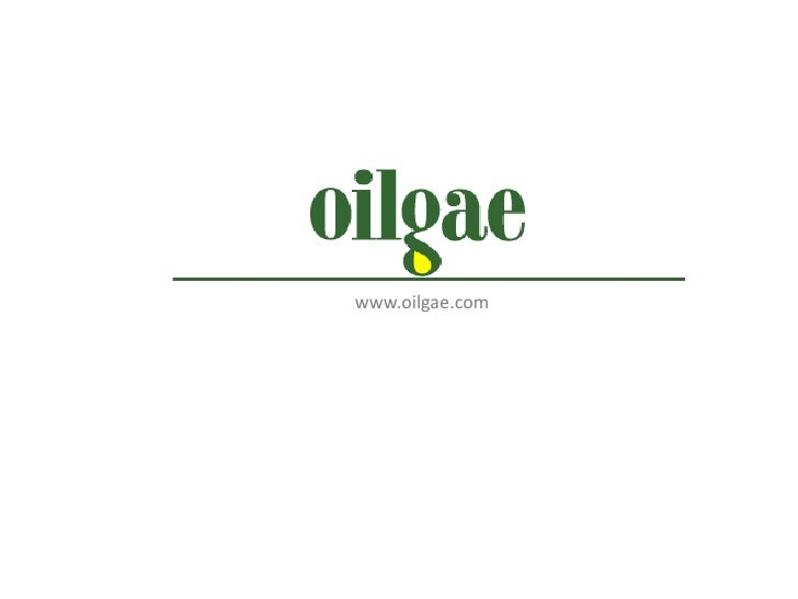 www.oilgae.com<br />