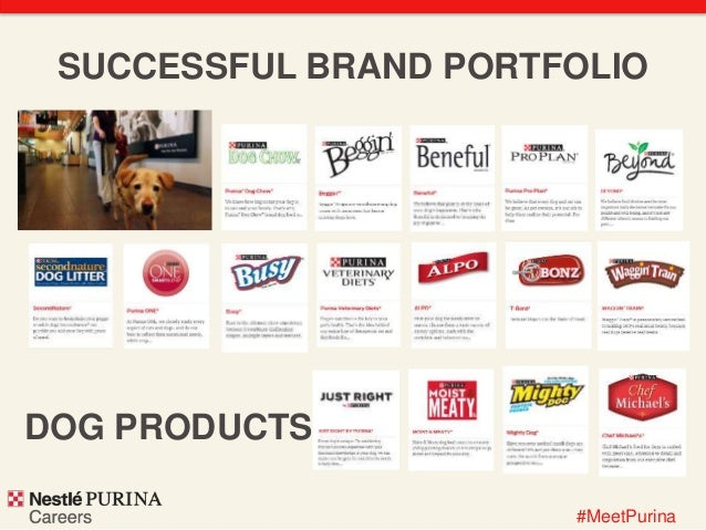 Purina Dog Food Careers