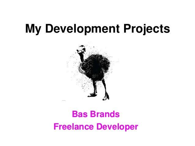 My Development Projects Bas Brands Freelance Developer