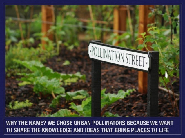WHY THE NAME? WE CHOSE URBAN POLLINATORS BECAUSE WE WANT TO SHARE THE KNOWLEDGE AND IDEAS THAT BRING PLACES TO LIFE
