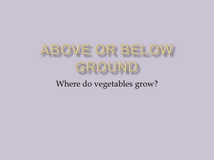 Above or below ground<br />Where do vegetables grow?<br />
