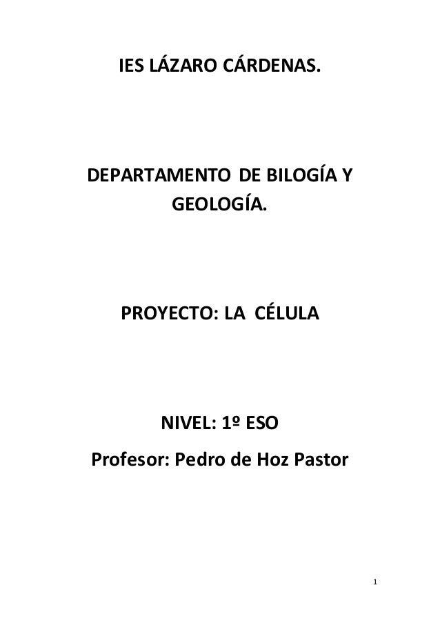 1 IES LÁZARO CÁRDENAS. DEPARTAMENTO DE BILOGÍA Y GEOLOGÍA. PROYECTO: LA CÉLULA NIVEL: 1º ESO Profesor: Pedro de Hoz Pastor