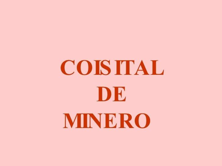 COISITAL DE MINERO