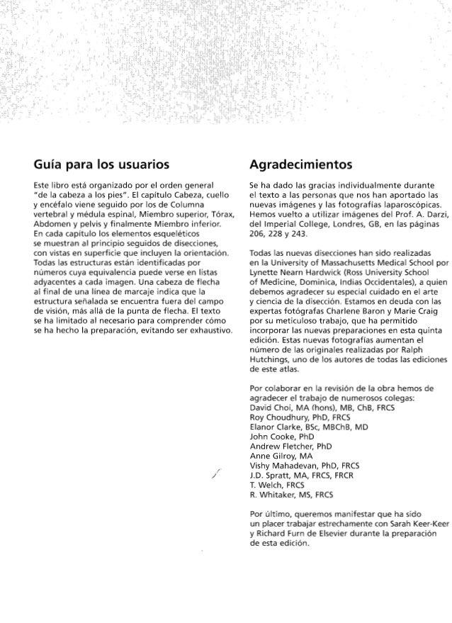 Magnífico Anatomía Y Fisiología Bsc Viñeta - Imágenes de Anatomía ...
