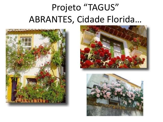 """Projeto """"TAGUS"""" ABRANTES, Cidade Florida…"""