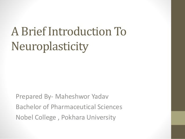 A Brief Introduction To Neuroplasticity Prepared By- Maheshwor Yadav Bachelor of Pharmaceutical Sciences Nobel College , P...