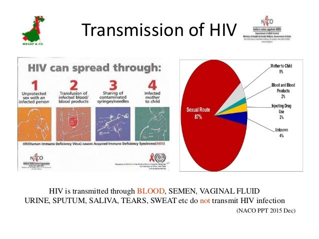 how aids affects a persons immunity It is therefore possible to stop primary or secondary prophylaxis in patients whose immunity has  mainly affects persons  opportunistic infection.