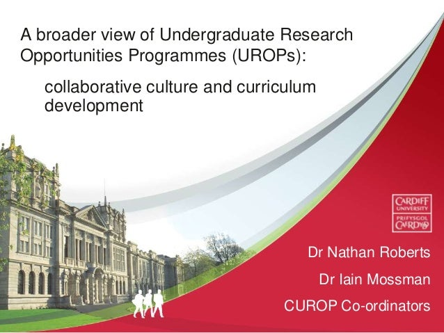 A broader view of Undergraduate Research Opportunities Programmes (UROPs): collaborative culture and curriculum developmen...