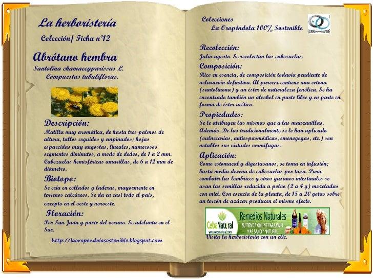 La herboristería                                       Colecciones                                                        ...