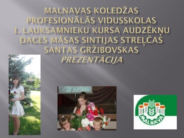    Dace iestājās Malnavas koledžas    profesionālajā vidusskolā 2004. gadā, pēc    pamatizglītības iegūšanas Vītolu    pa...