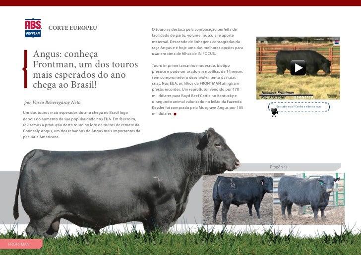 CORTE EUROPEU                                        O touro se destaca pela combinação perfeita de                       ...