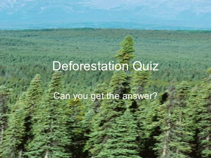 Deforestation Quiz Can you get the answer?