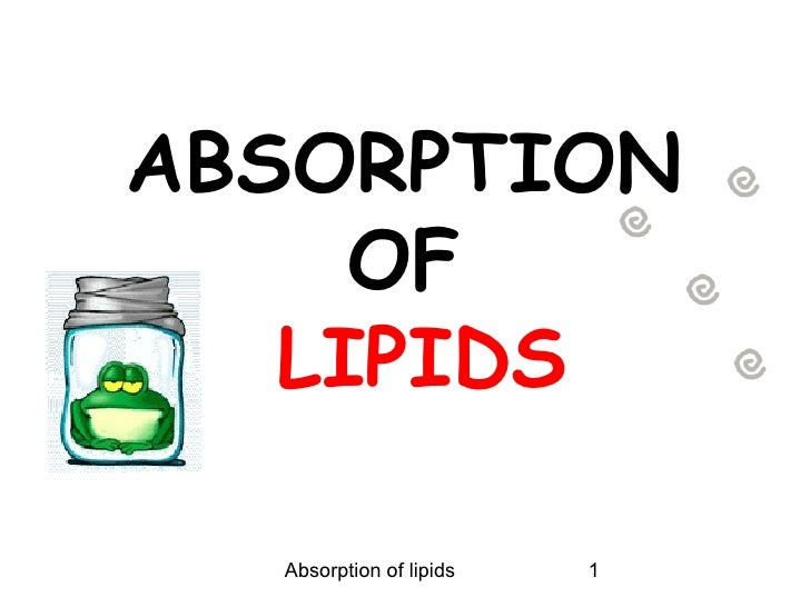 ABSORPTION     OF   LIPIDS  Absorption of lipids   1