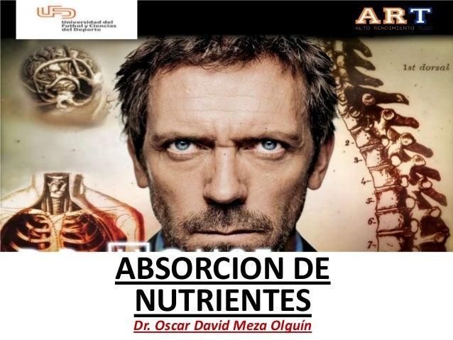 ABSORCION DE NUTRIENTES Dr. Oscar David Meza Olguín