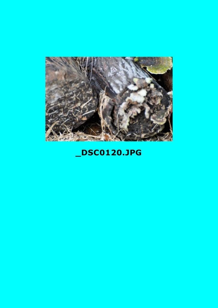 Abstactz2 Slide 3