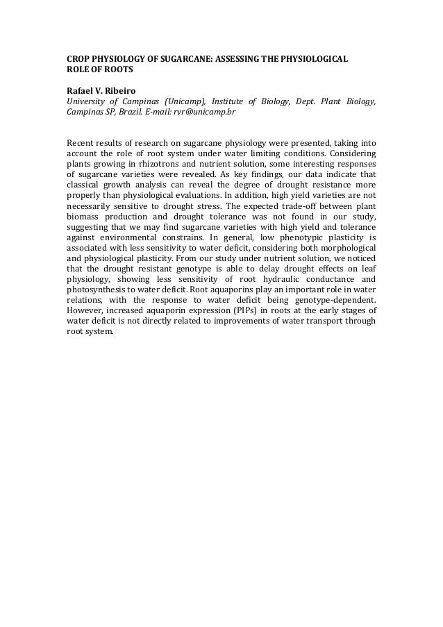 CROP  PHYSIOLOGY  OF  SUGARCANE:  ASSESSING  THE  PHYSIOLOGICAL   ROLE  OF  ROOTS        Rafael  ...
