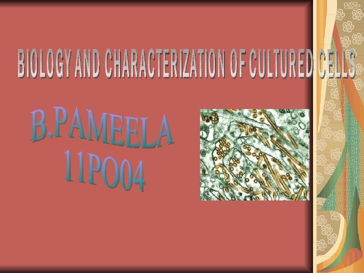 INTRODUCTION Characterization of cell lines is necessary to identify linage of the cells, to the genetic stability, phenot...