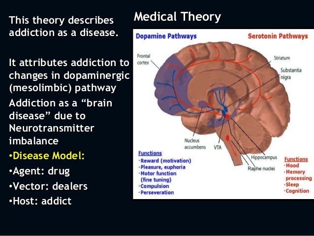 the disease model and the moral model for considering drug addiction Addiction a disease or a moral deficiency there are several models that have been developed to explain drug use and its associated problems such as.