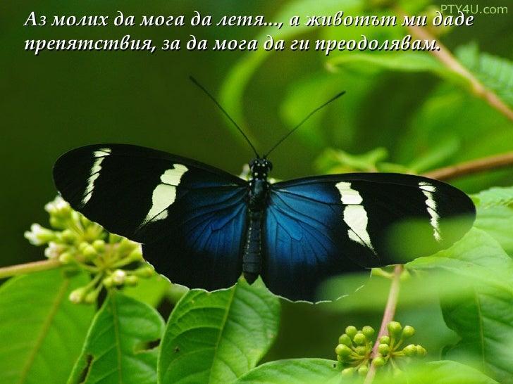 Аз молих да мога да летя..., а животът ми даде препятствия, за да мога да ги преодолявам.