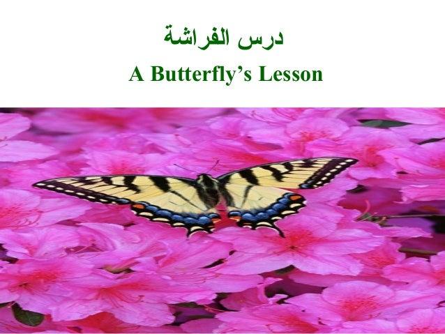 الفراشة درس A Butterfly's Lesson