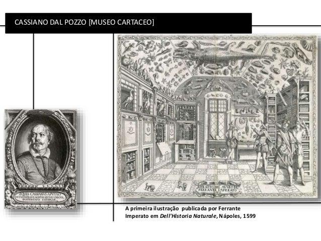 CASSIANO DAL POZZO [MUSEO CARTACEO] A primeira ilustração publicada por Ferrante Imperato em Dell'Historia Naturale, Nápol...