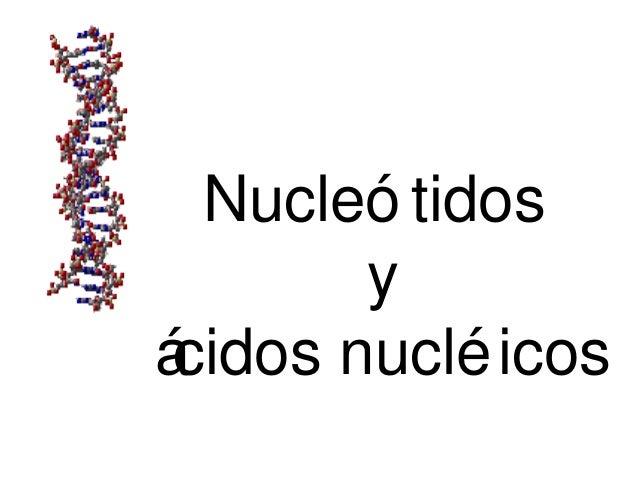 Nucleó tidos y ácidos nucléicos