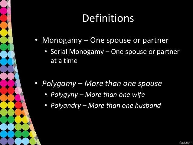 Definition of monogamous