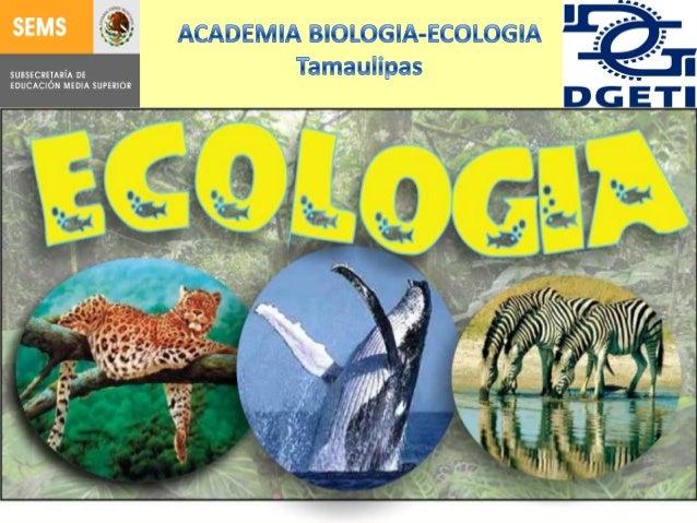 C U R S O DE          ECOLOGIASECUENCIA 1 BIOSFERA1.1 BIOMA•INTRODUCCION A LA ECOLOGIA•CONCEPTOS GENERALES DE BIOSFERA,BIO...