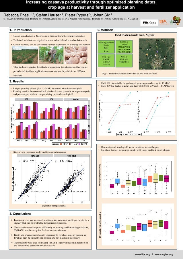 www.iita.org I www.cgiar.org Increasing cassava productivity through optimized planting dates, crop age at harvest and fer...