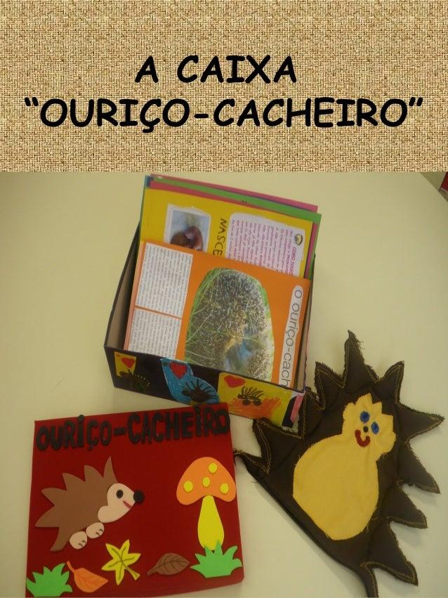 """A CAIXA """"OURIÇO-CACHEIRO"""""""