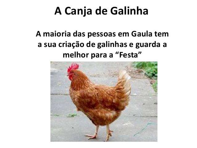 """A Canja de Galinha A maioria das pessoas em Gaula tem a sua criação de galinhas e guarda a melhor para a """"Festa"""""""