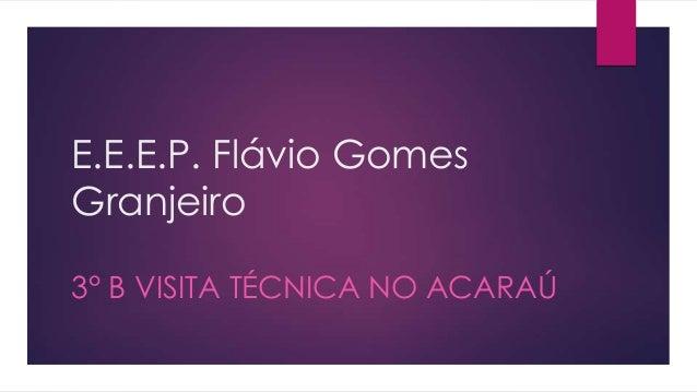 E.E.E.P. Flávio GomesGranjeiro3° B VISITA TÉCNICA NO ACARAÚ