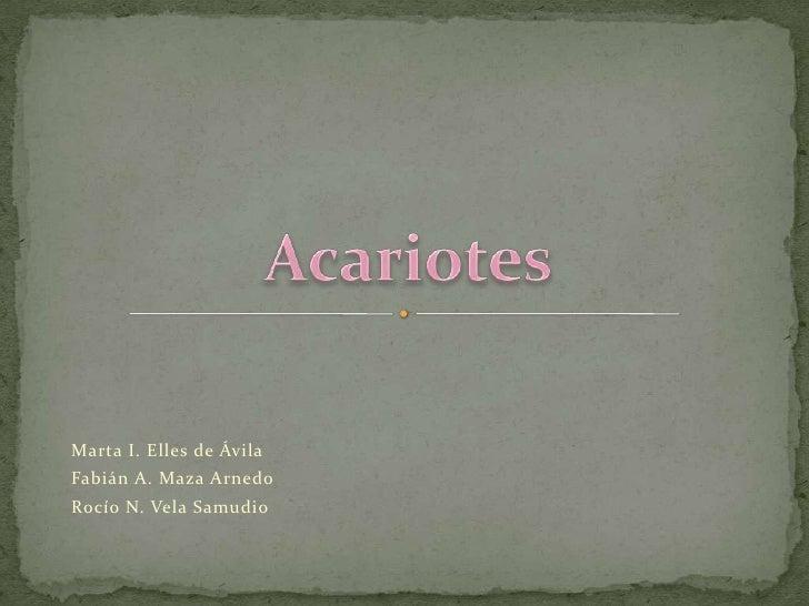 Marta I. Elles de Ávila<br />Fabián A. Maza Arnedo<br />Rocío N. Vela Samudio<br />Acariotes<br />