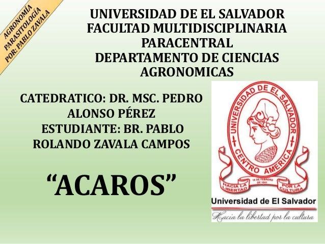 UNIVERSIDAD DE EL SALVADOR FACULTAD MULTIDISCIPLINARIA PARACENTRAL DEPARTAMENTO DE CIENCIAS AGRONOMICAS CATEDRATICO: DR. M...