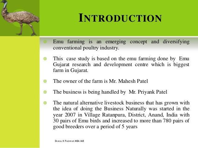 Emu farming catching on in Gujarat