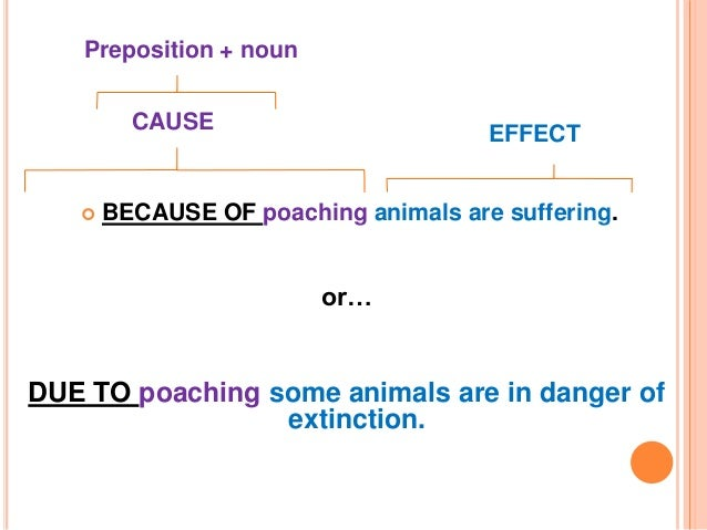 10 example of cause and effect sentences