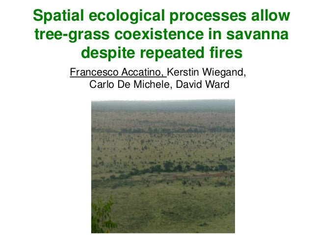 Spatial ecological processes allow tree-grass coexistence in savanna despite repeated fires Francesco Accatino, Kerstin Wi...