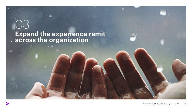 03 Expand the experience remit across the organization