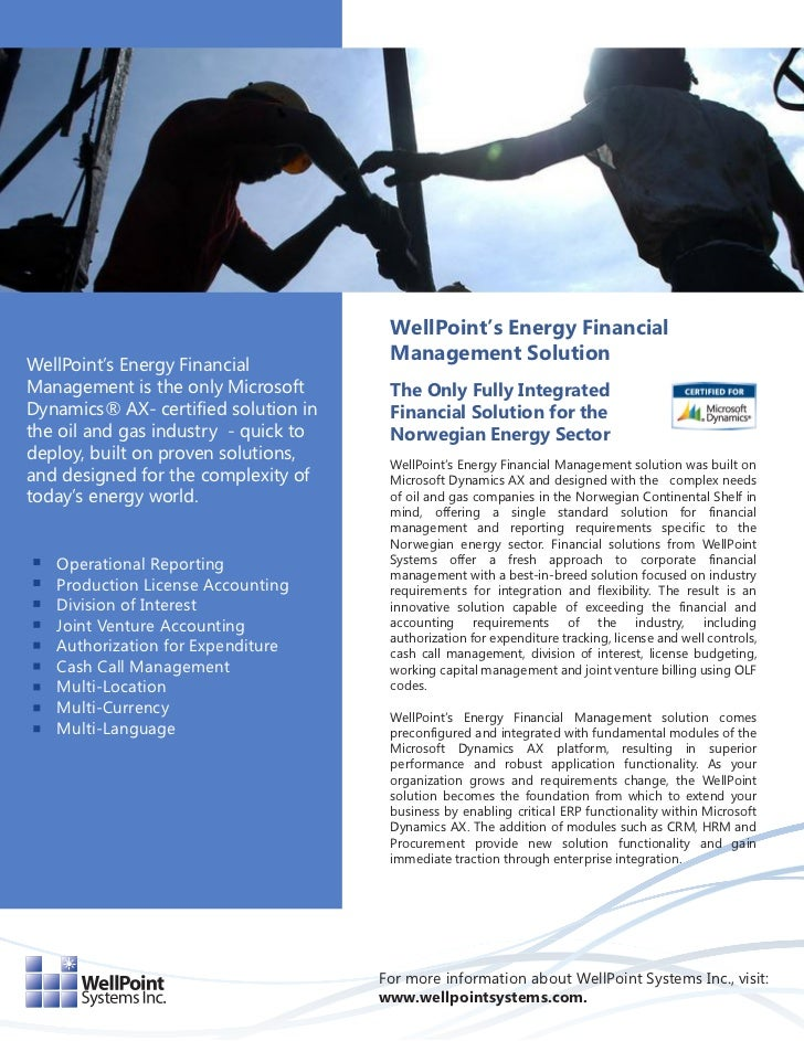 WellPoint's Energy Financial                                       Management SolutionWellPoint's Energy FinancialManageme...