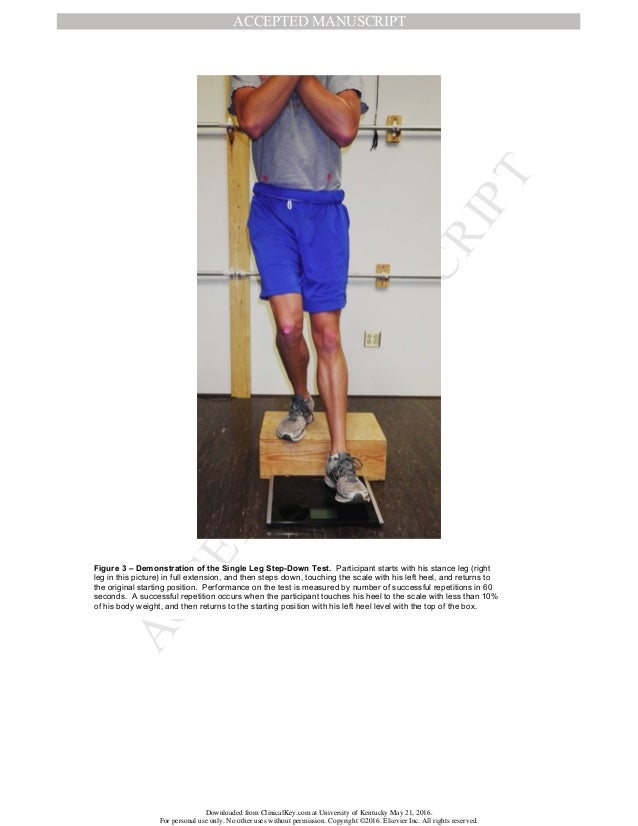 muscular leg strength and sprint performance relationship Pearson's correlations and stepwise regression (p ≤ 005) determined velocity, step kinematics, and leg muscle performance relationships.