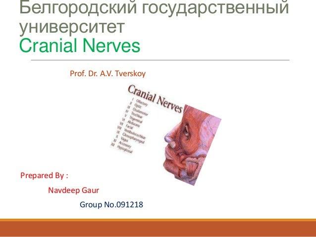 Белгородский государственный университет Cranial Nerves Prof. Dr. A.V. Tverskoy  Prepared By :  Navdeep Gaur Group No.0912...