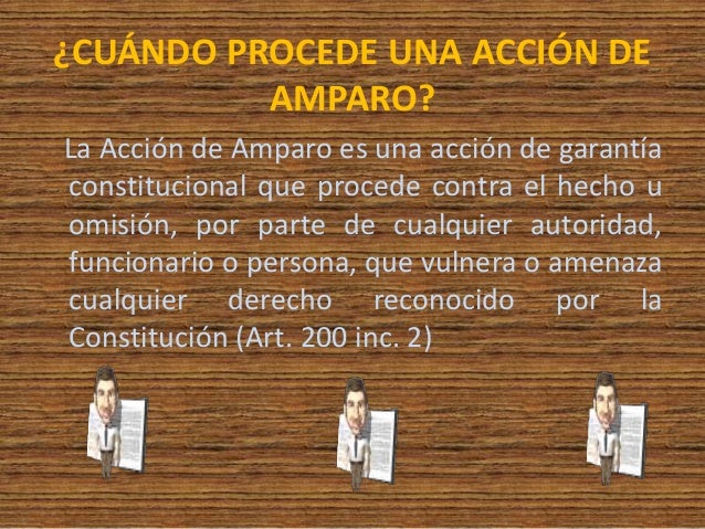 ACCION DE AMPARO PDF DOWNLOAD