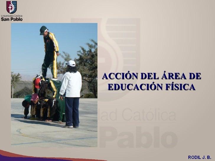 ACCIÓN DEL ÁREA DE EDUCACIÓN FÍSICA