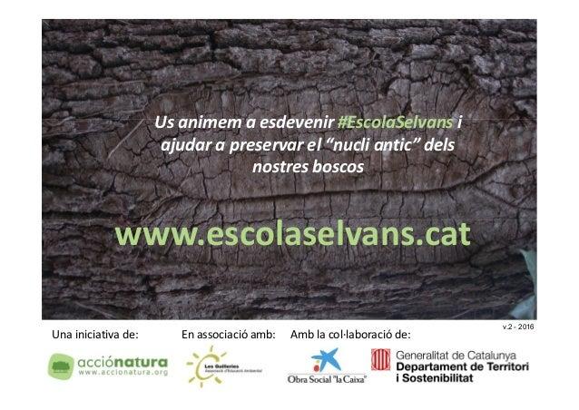 Una iniciativa de: En associació amb: Amb la col·laboració de: Us animem a esdevenir #EscolaSelvans i ajudar a preservar e...