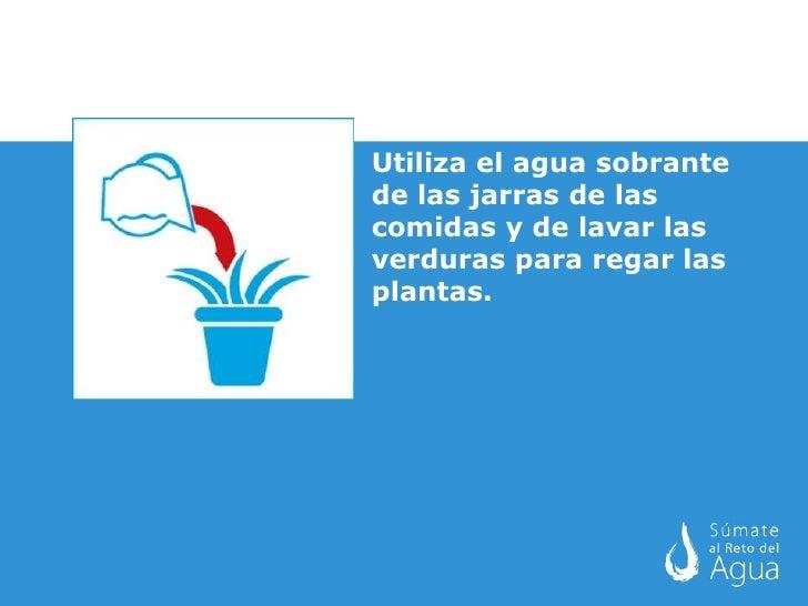 acciones para ahorrar agua