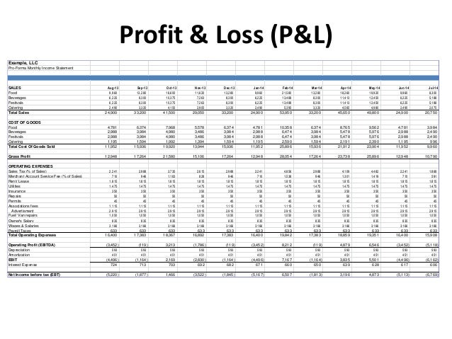 monthly profit and loss statement
